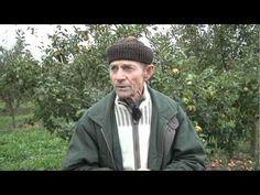Entretien avec Bernard Ronot - YouTube