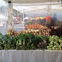 A table full of goodies! #tatsoi #beets #greens #radishes #farmersmarketnyc #Manhattan Union Square Greenmarket