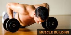 Need to know how many reps to do for each muscle group? Look no farther!