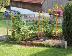 Klettergerüst Für Pflanzen : Die 47 besten bilder von gemüsegarten vegetable garden vegetables