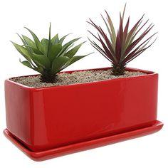 10 inch Rectangular Modern Minimalist Red Ceramic Succule...