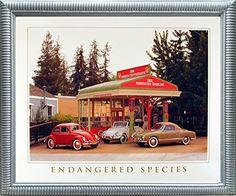 Endangered Species Volkswagen-VW Classics Wall Silver Fra... https://www.amazon.com/dp/B01MXW9HW1/ref=cm_sw_r_pi_dp_x_0o8pzb0GT7M6N