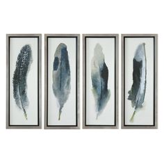 Uttermost Feathered Beauty Prints - Set of 4   from hayneedle.com