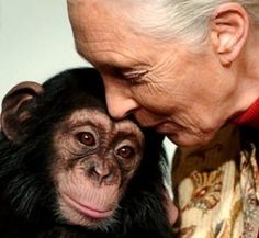 Jane Goodall opened up the complexity of chimps to the world when everyone thought otherwise. Connecting the dots, a face and a voice for animals, esp chimps.