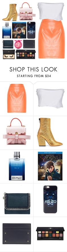 """6.882"" by katrinattack ❤ liked on Polyvore featuring Twin-Set, Niels Peeraer, Petar Petrov, Salvatore Ferragamo, STELLA McCARTNEY, Physicians Formula, Kenzo, Valentino, Anastasia Beverly Hills and Lash Star Beauty"