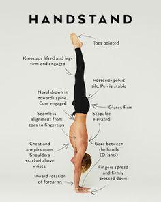 8 fasten hirschhausen – Keep up with the times. Vinyasa Yoga, Ashtanga Yoga, Iyengar Yoga, Yoga Inspiration, Yoga Handstand Poses, How To Handstand, Handstand Progression, Press Handstand, Yin Yoga