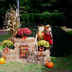 I'm going to do this to my yard whenever I can get to the orchard and get my pumpkins! :D