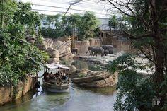 voschenheugte is 26 minuten van Wildlands Zoo Emmen