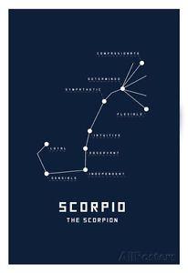 Astrology Taurus Wall Decor Apr 21 – May 21 Zodiac Horoscope Art Print Poster Astrology Capricorn, Astrology Chart, Zodiac Horoscope, Astrology Signs, Zodiac Signs, Scorpio Quotes, Scorpio Facts, Zodiac Personalities, Zodiac Constellations