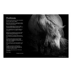 =>Sale on          Desiderata - Fine Art Pony Head and Mane Print           Desiderata - Fine Art Pony Head and Mane Print Yes I can say you are on right site we just collected best shopping store that haveThis Deals          Desiderata - Fine Art Pony Head and Mane Print Here a great deal...Cleck Hot Deals >>> http://www.zazzle.com/desiderata_fine_art_pony_head_and_mane_print-228476216527921496?rf=238627982471231924&zbar=1&tc=terrest