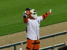 paws detroit tigers mascot photos | Image of Paws the Detroit Tigers mascot getting the crowd on they're ...