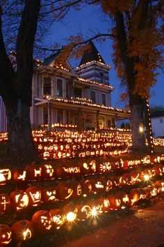 Halloween house. Wow, just wow! Mel, is this your moms house?!?! Haha