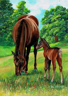 Horse painting by Val Stokes