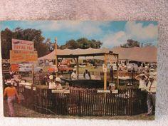 "#vintagedelmarva ""Delmarva's Original World's Largest Frying Pan, Georgetown, Delaware Post Card"" front side  http://www.ebay.com/itm/Delmarvas-Original-Worlds-Largest-Frying-Pan-Georgetown-Delaware-Post-Card-/181961117667"