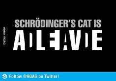 Schrödinger's cat is... never mind.