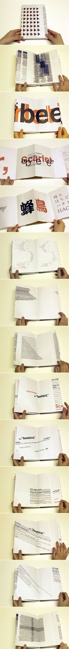 Book Design: Experimental Typography