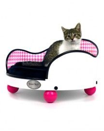 The cutest cat beds are at www.smuccitoo.com - because you design the cat bed! Over 15,000 possible combinations!
