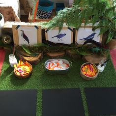 Bird/nest inspired Reggio provocation, create your own collage mosaic.
