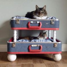 Good Way To Reuse Old Suitcases