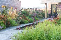 Onderhoudsvriendelijke Vloeren Tuin : Best onderhoudsvriendelijke tuin images home