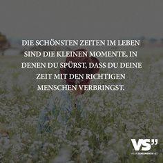 Die schönsten Zeiten im Leben sind die kleinen Momente, in denen du spürst, dass…
