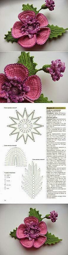 Crochet Flowers Patterns/Patrones de flores a crochet - Sandra Fontaine - Photo Freeform Crochet, Tunisian Crochet, Crochet Art, Crochet Motif, Irish Crochet, Crochet Crafts, Crochet Projects, Crochet Granny, Crochet Doilies