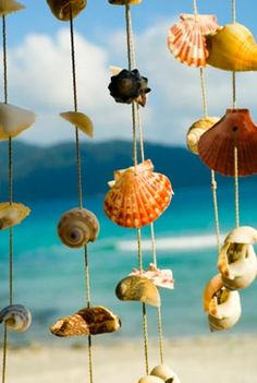 Nim's Seashell Wind Chime    #DIY #NimCraft