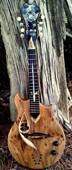 "Highlander Mandolins Spirit Walker"" Lardys Chordophone of the day 2017 --- https://www.pinterest.com/lardyfatboy/"