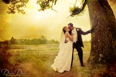gorgeous wedding kiss tree shot