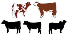 Breeding Heifer Printables Craft lovers, scrapbookers, and DIY designers love this 1 page printable JPG featuring the traditional shapes of market livestock. This 1 page instant download is designed at 150 dpi and includes a variety of breeding heifer stencils including a Brahman heifer, club calf heifer, breeding bull, Hereford and Shorthorn.