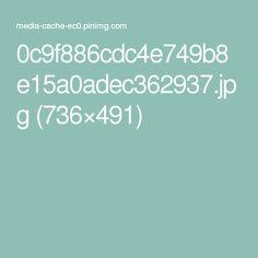 0c9f886cdc4e749b8e15a0adec362937.jpg (736×491)