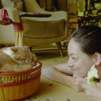 """Movie review: Naoko Ogigami's 'Rentaneko (Rent-a-Cat)' """"The style is spare but poetic, the mood is warm but wistful, and the characters are lovable but finally enigmatic."""""""