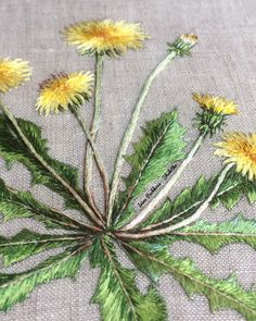 Flower Embroidery Designs, Diy Embroidery, Cross Stitch Embroidery, Embroidery Patterns, Dandelion Flower, Brazilian Embroidery, Wool Applique, Vintage Flowers, Textiles