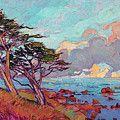 Cypress Light by Erin Hanson