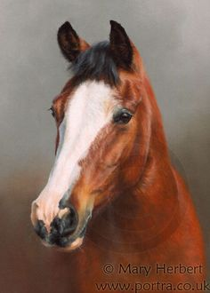 """Chips 9x7"""" pastel commission www.portra.co.uk"""
