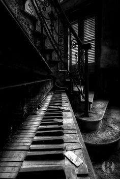 ♫♪ PIANO♪♫ ♥.....La música es el corazón de la vida. Por ella habla el amor; sin ella no hay bien posible y con ella todo es hermoso. Franz Liszt