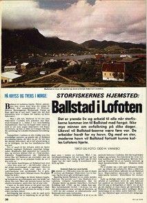 #Ballstad #HattvikaLodge #Lofoten