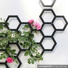 Flora Combination trellis
