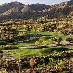 Phoenix, AZ  The desert continues to reveal its beauty. #collegesuites #ultimatespringbreak
