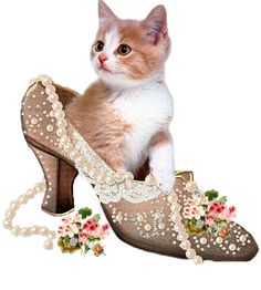CUTE CATS: 2013 AYAKKABI MODELLERİ .....