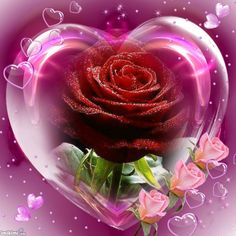 valentine's day pelicula trailer subtitulado