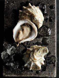 Oysters .. colors/textures