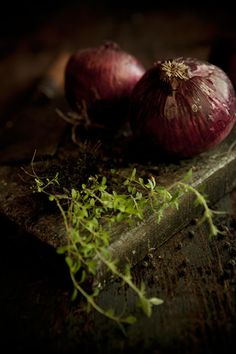 Red Onions and Thyme - photographer Teri Studios