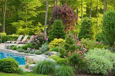 terrasse et jardin aménagement avec piscine chaises longues et plantes