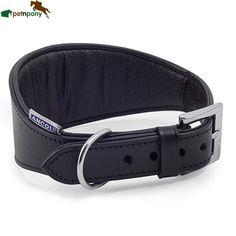 Give your  Greyhound a new look  Ancol Padded Whippet/Greyhound Collar #petnpony #pet #durham #dog #doglover #dogstagram #dogoftheday #petsagram #dogsofinsta #doglife http://petnpony.co.uk/products/ancol-padded-whippet-greyhound-collar?utm_campaign=crowdfire&utm_content=crowdfire&utm_medium=social&utm_source=pinterest