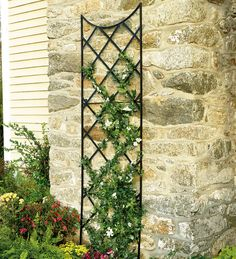 Extra Tall Trellis, Plow & Hearth. Nine feet tall. Three-foot extender pieces also available.