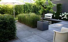 pinterest kleine tuinen ontwerpen - Google zoeken