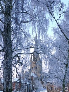 Norwich Cathedral, N