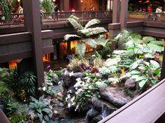 I miss this place =( Disney Stuff, Disney Love, Disney Magic, Disney Resort Hotels, Hotels And Resorts, Disney World Pictures, Polynesian Resort, Ground Level, Vintage Disney