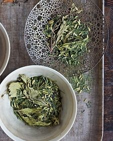 Fennel-Mint Green Mix: Wrap your hands around the perfect cup with Briar Winters's masterful methods.